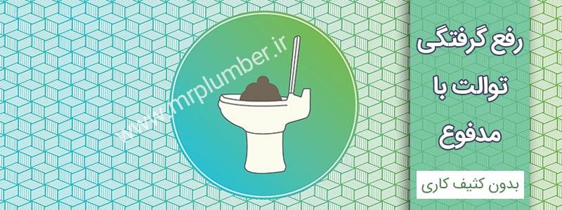 رفع گرفتگی توالت با مدفوع